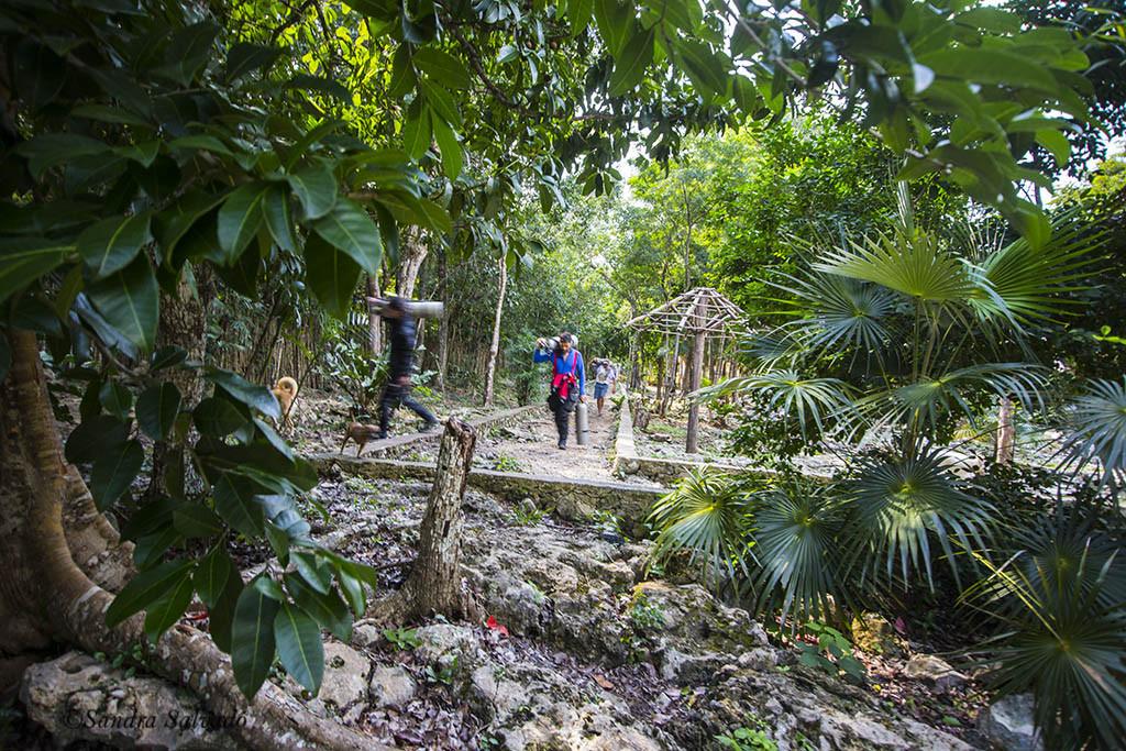cenote_calavera_tulum
