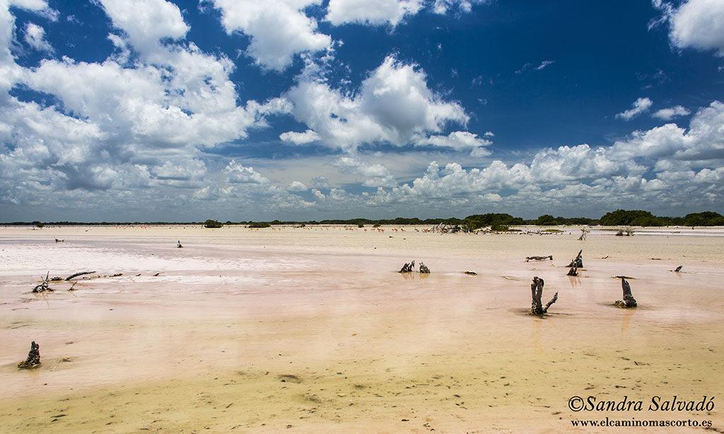 Emerald Coast Yucatan