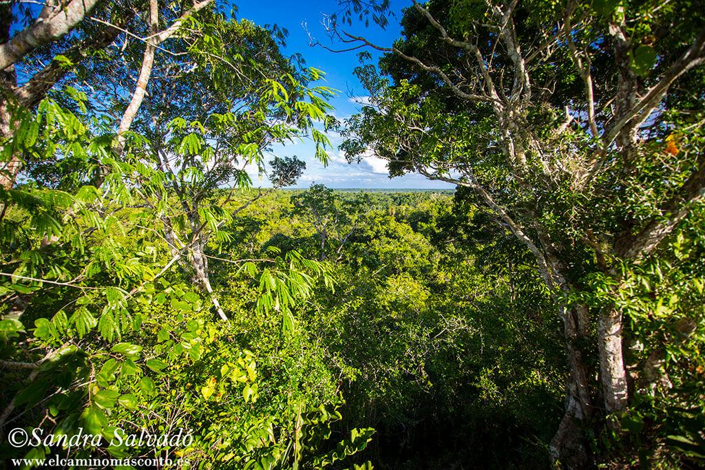 Parque Natural las Lagarteras, cobijo de Lagartera