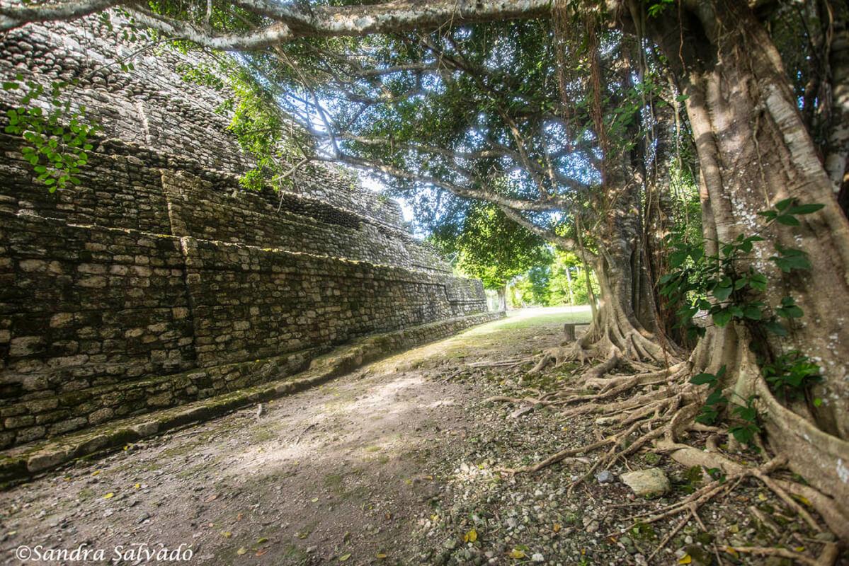 zona_arqueologico_chacchoben