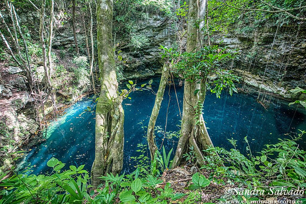 Cenote Hamtun, secretos al lado de la carretera