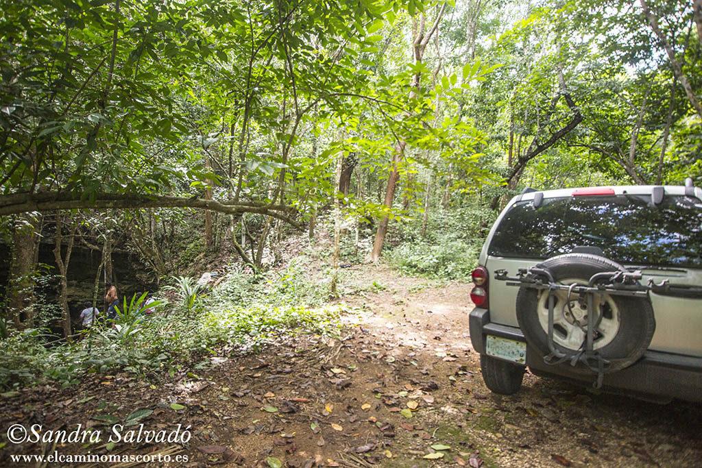 Cenote Hamtun, secrets next to the 1 road