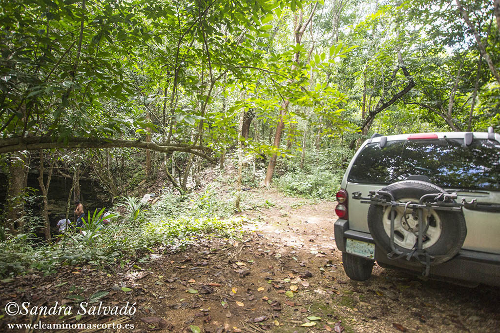 Cenote Hamtun, secretos al lado de la carretera 1