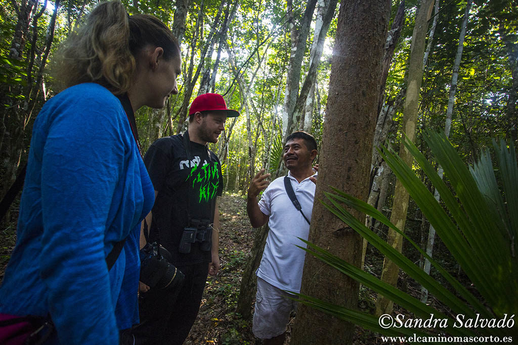 Centro Ecoturistico Kiichpam Ka'ax, Selva Bonita. Chunhuhub