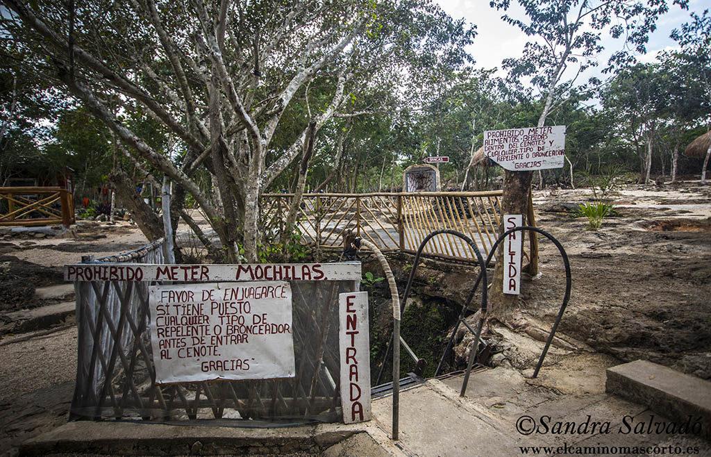 Cenote Canunchen, otro rincón de Homún 3