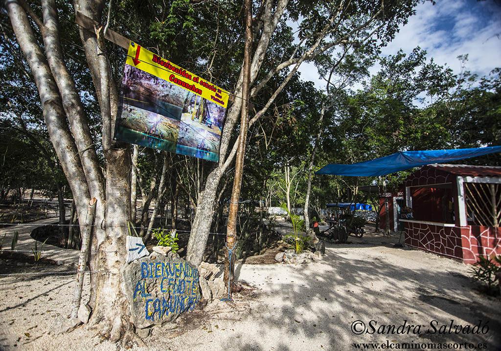Cenote Canunchen, otro rincón de Homún 2