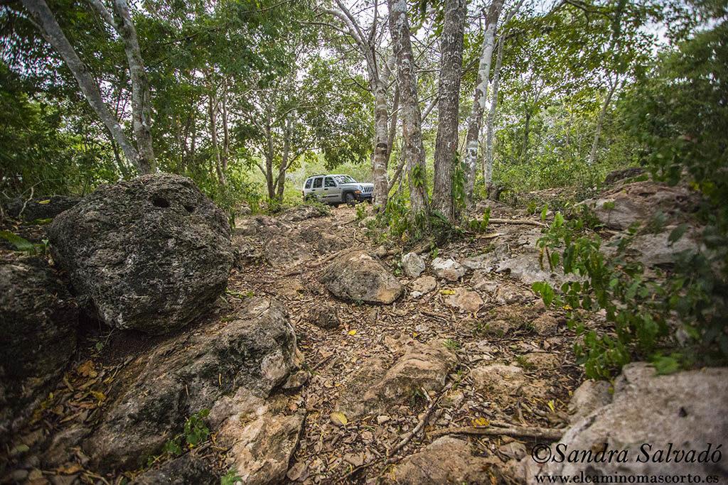Cenote Chelpak, el pequeñito de Homún 2