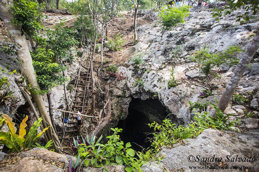 Cenote Tres Oches, natural charm 4