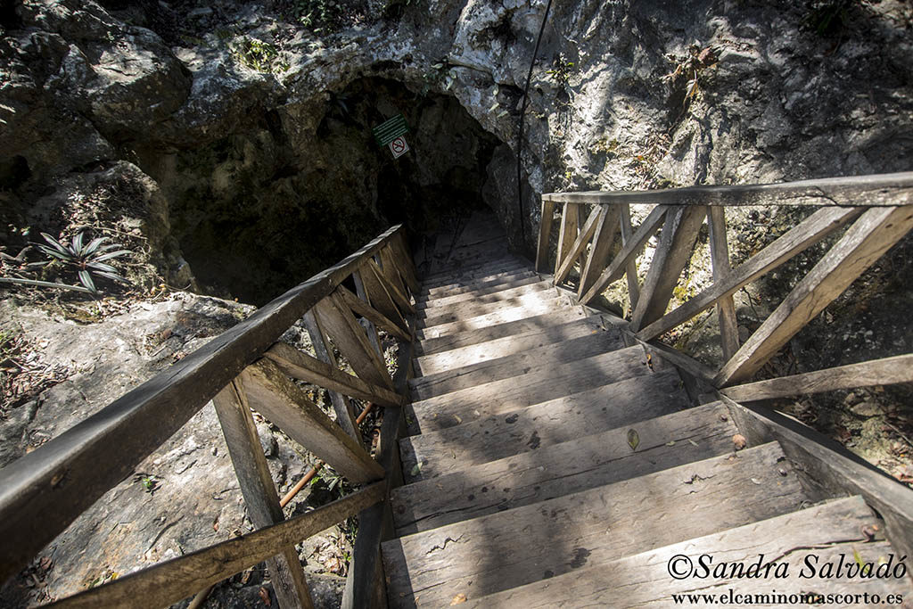 cenotes_coba_choo-ha