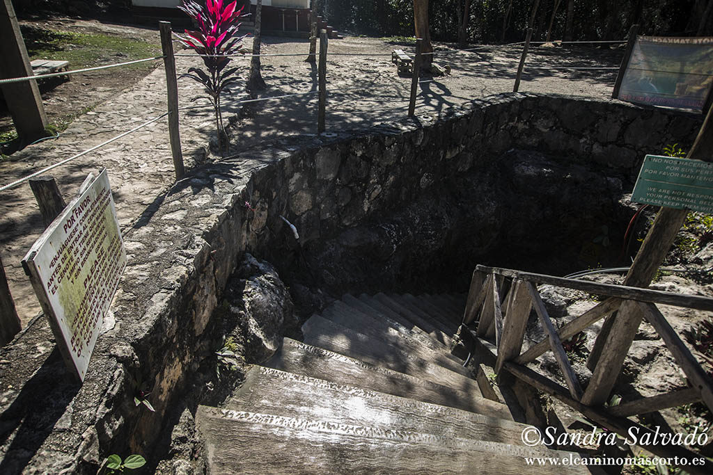 Cenote Tamcach Ha, clavados en Cobá 1