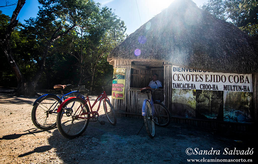 The 4 cenotes in Cobá, complete information of the 1 area