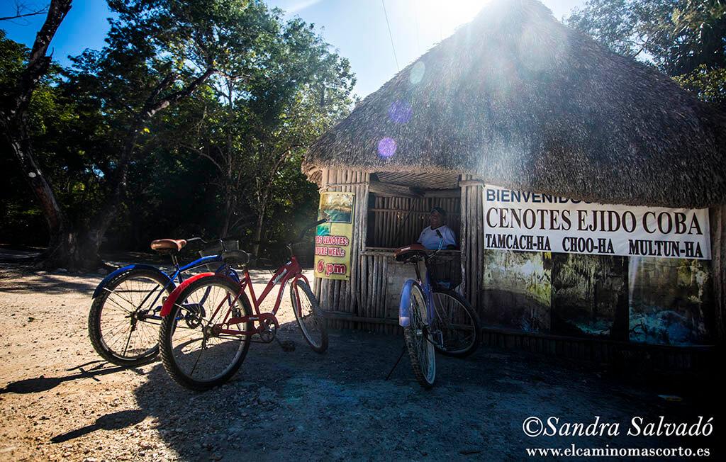 Los 4 cenotes en Cobá, información completa de la zona 1