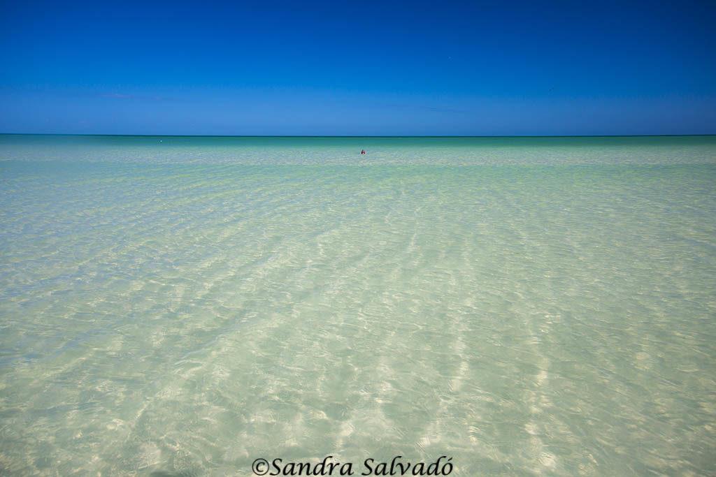 playas-Isla-Holbox