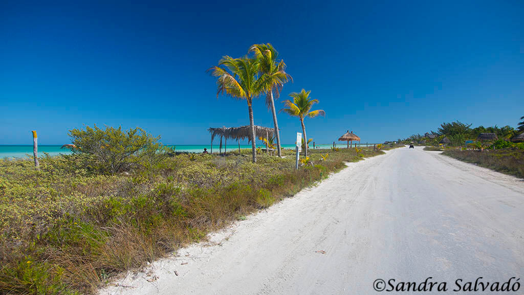 how-to-get-to-holbox