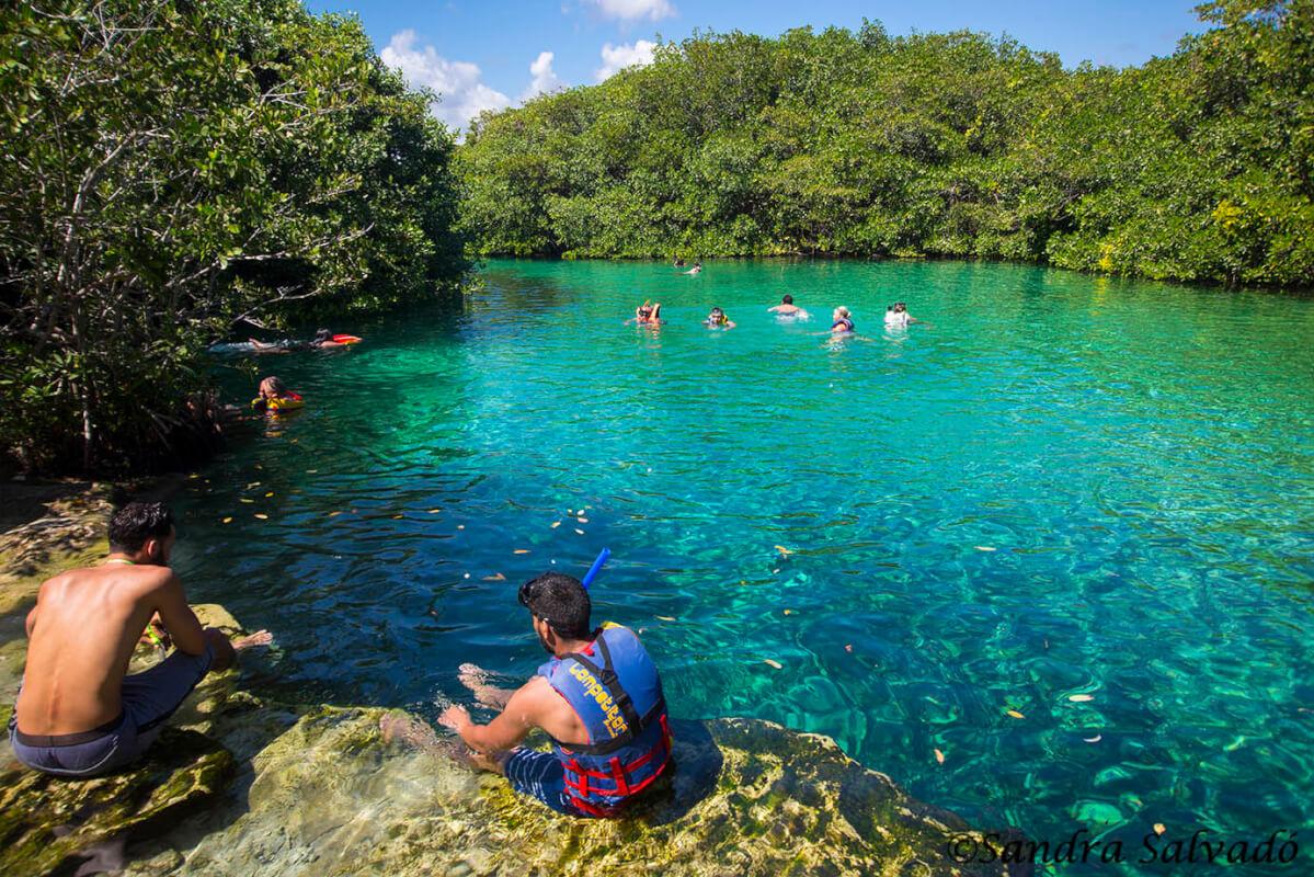home cenote tulum manati