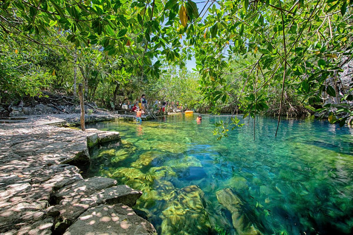 Cenote Cristalino playa del carmen
