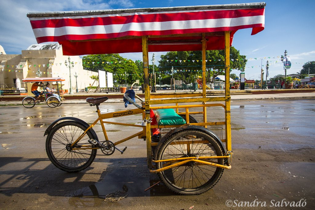 tricitaxi transportes yucatan