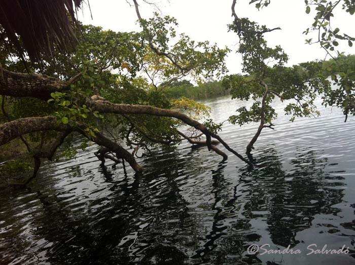 cenote_azul_bacalar