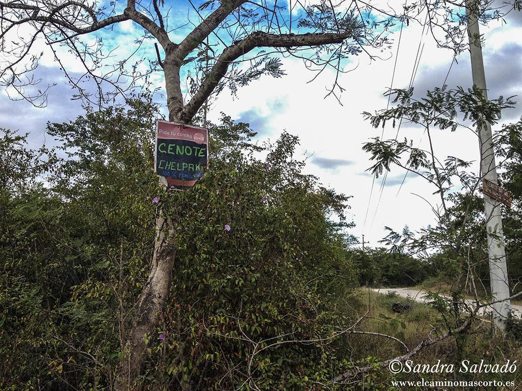 Cenote Chelpak, el pequeñito de Homún 1