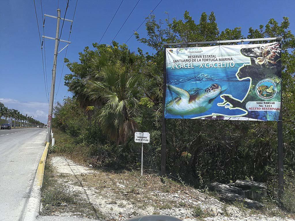 Playa Xcacel-Xcacelito, santuario de la tortuga marina en el Caribe 2
