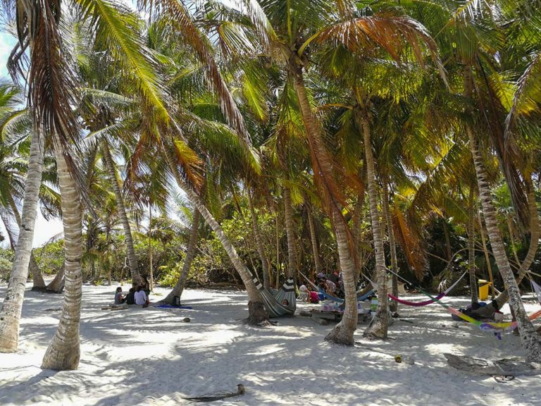 Discover the amazing beaches of the Mexican Caribbean 4