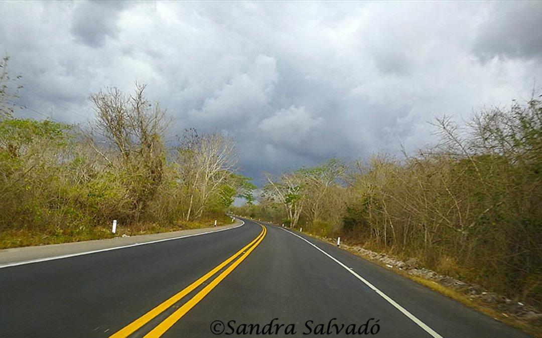 viajar_mexico_autobus