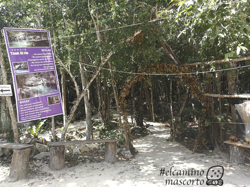 entrada cenote taak bi ha