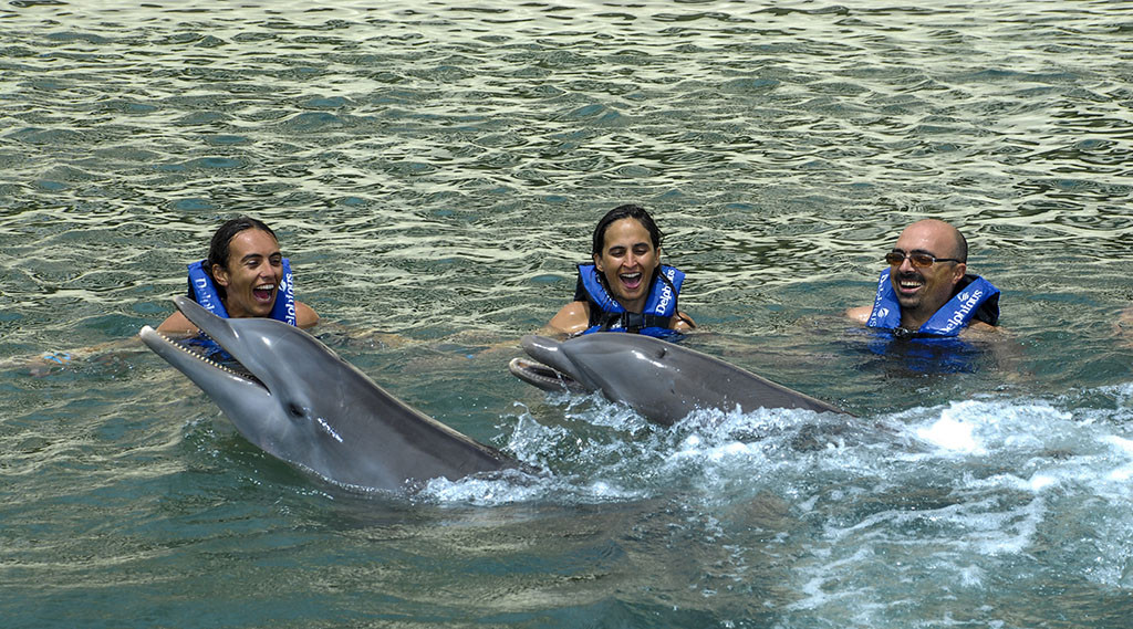 Swim with dolphins in Riviera Maya 2