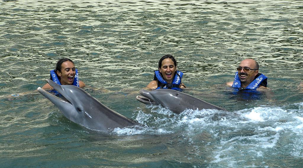 Nado con delfines en Riviera Maya 2