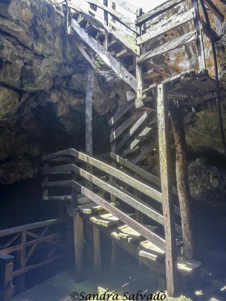 cenote_dzonotoch_yucatan
