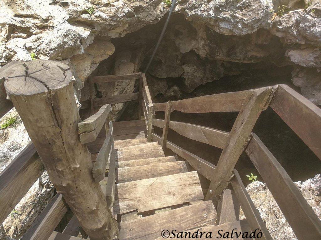 cenote_dzonotoch_yucatan_sucila
