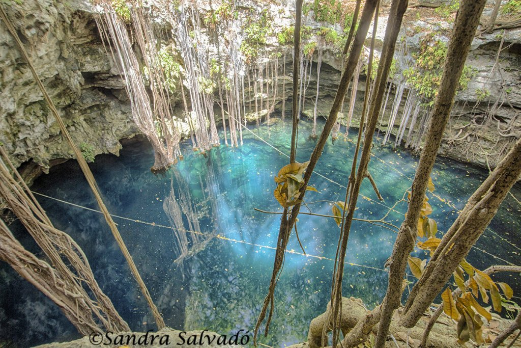 cenotes cerca de merida