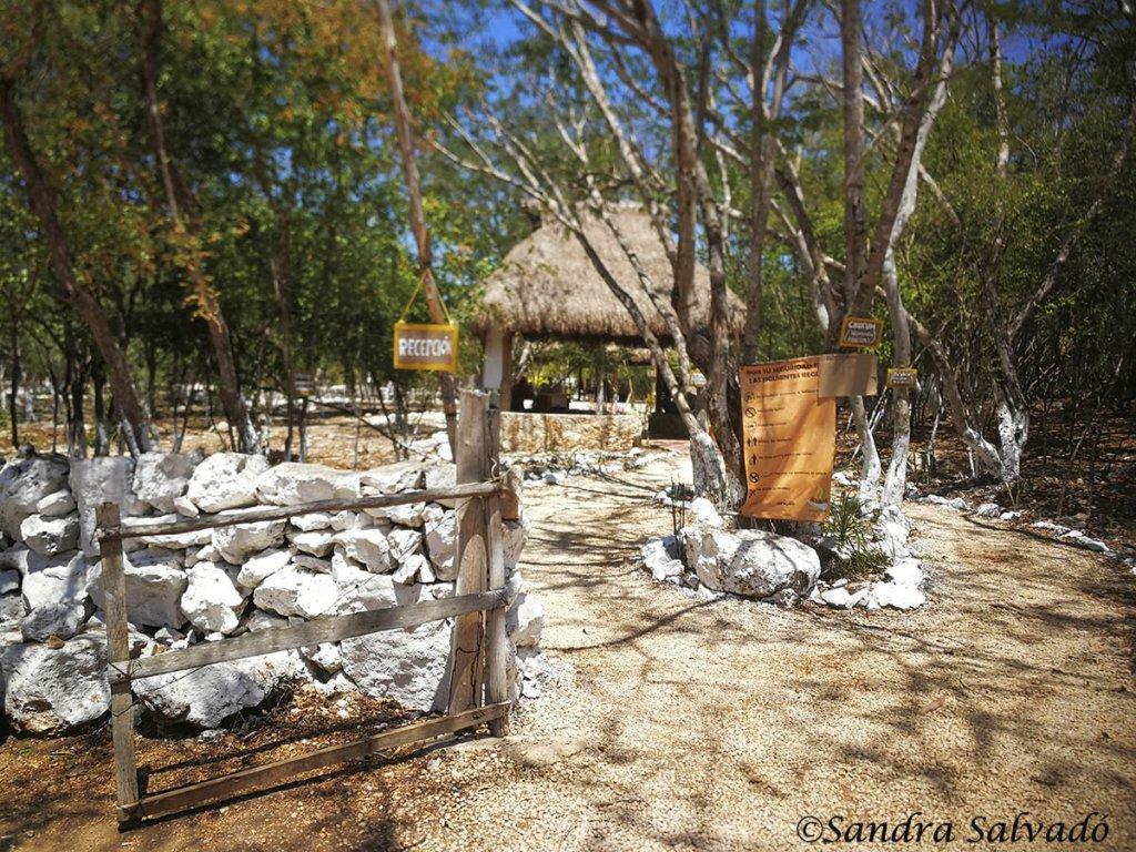 Cenote_Sambula_Peba_yucatan