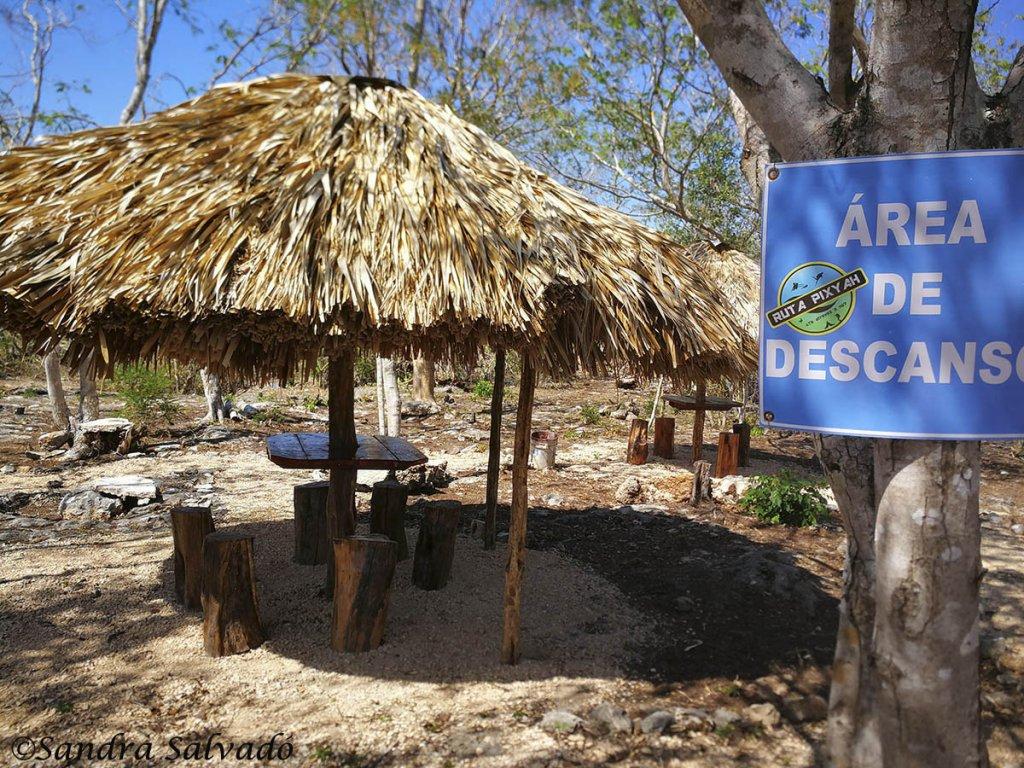 cenote_suhem_yucatan