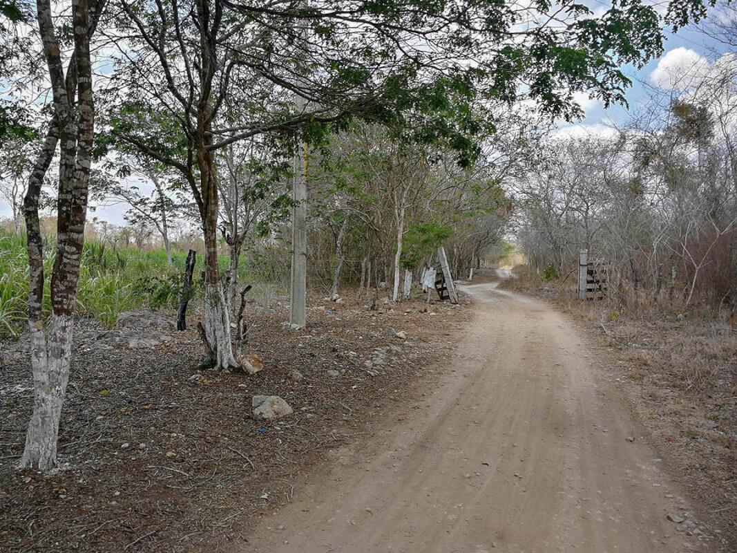 Cenote Usil, Cenotillo y sus cenotes 2