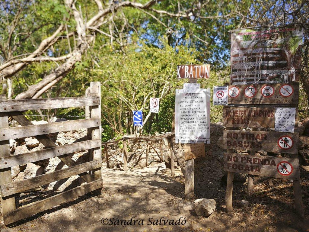 Cenote X Batún yucatan
