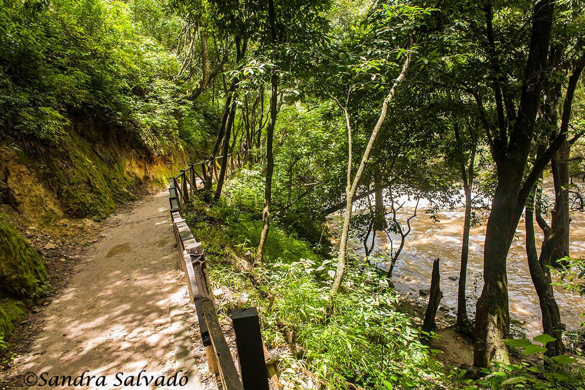 Camino de la cascada de Chiflón, Chiapas, México.