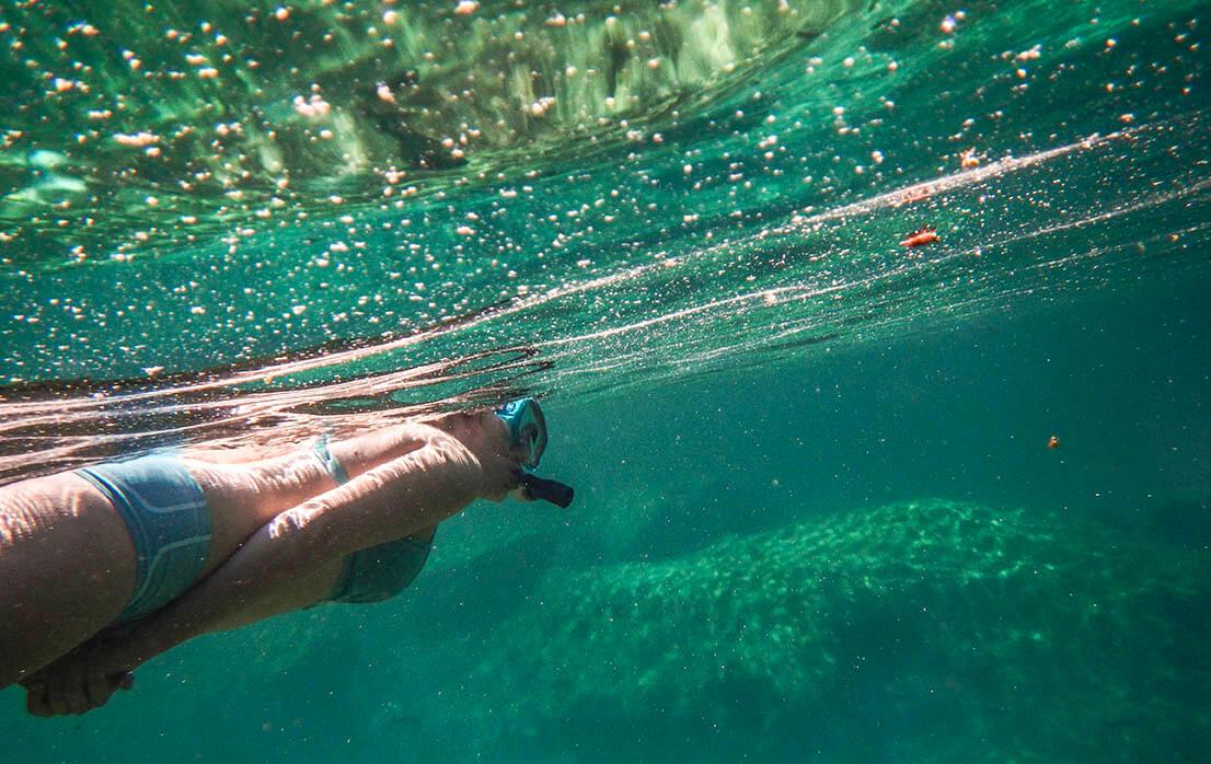 Snorkel en caleta Yal kú, Akumal, Riviera Maya, México.