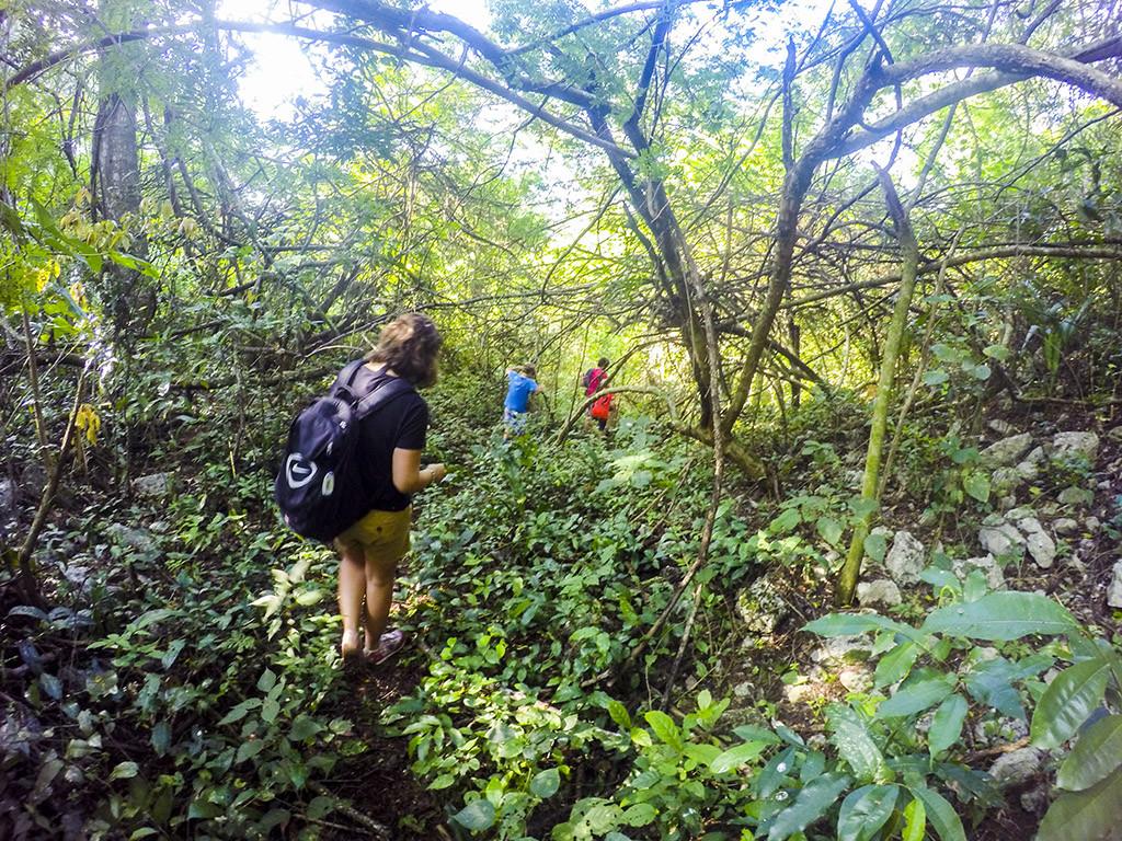 Punta Laguna senderismo en la selva,  Quintana Roo México.