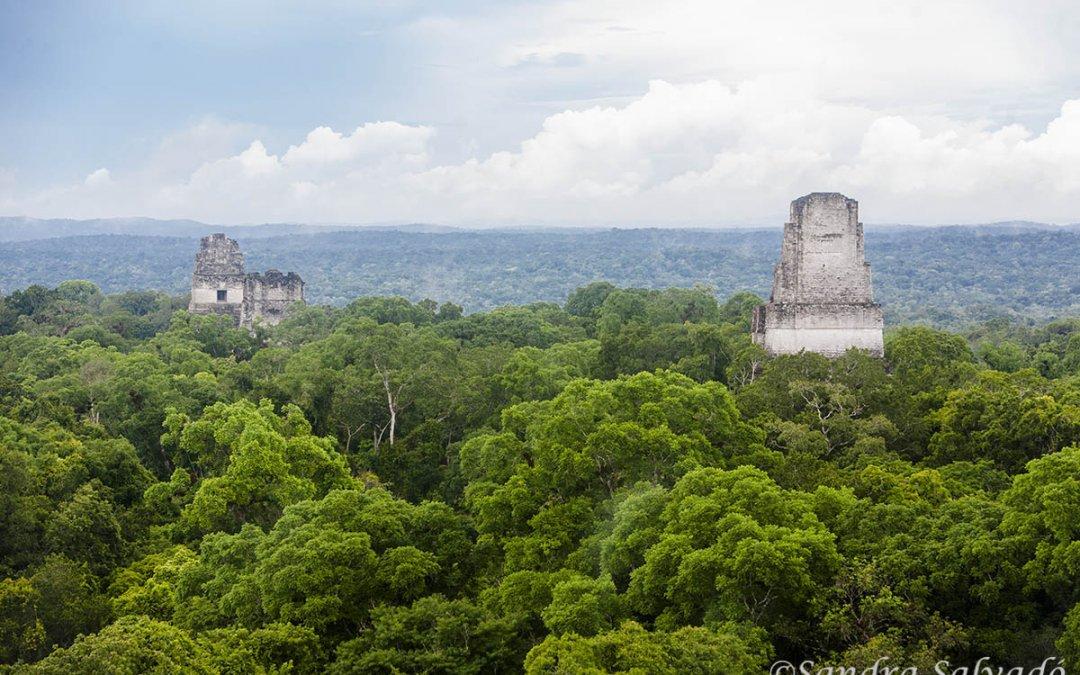 Tikal, the imposing of the Mayan world