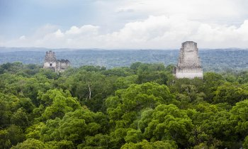 Tikal, the imposing of the Mayan world