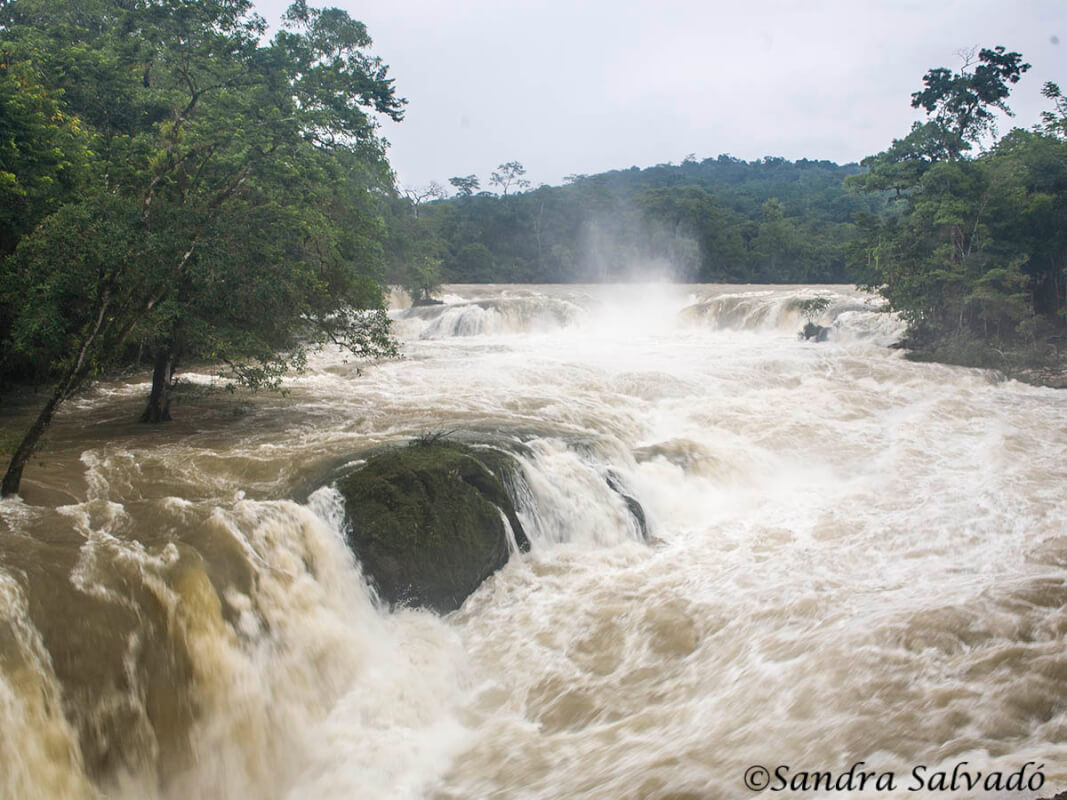 Reserva Biosfera Montes Azules   Chiapas, México. Cascadas de Las Nubes.