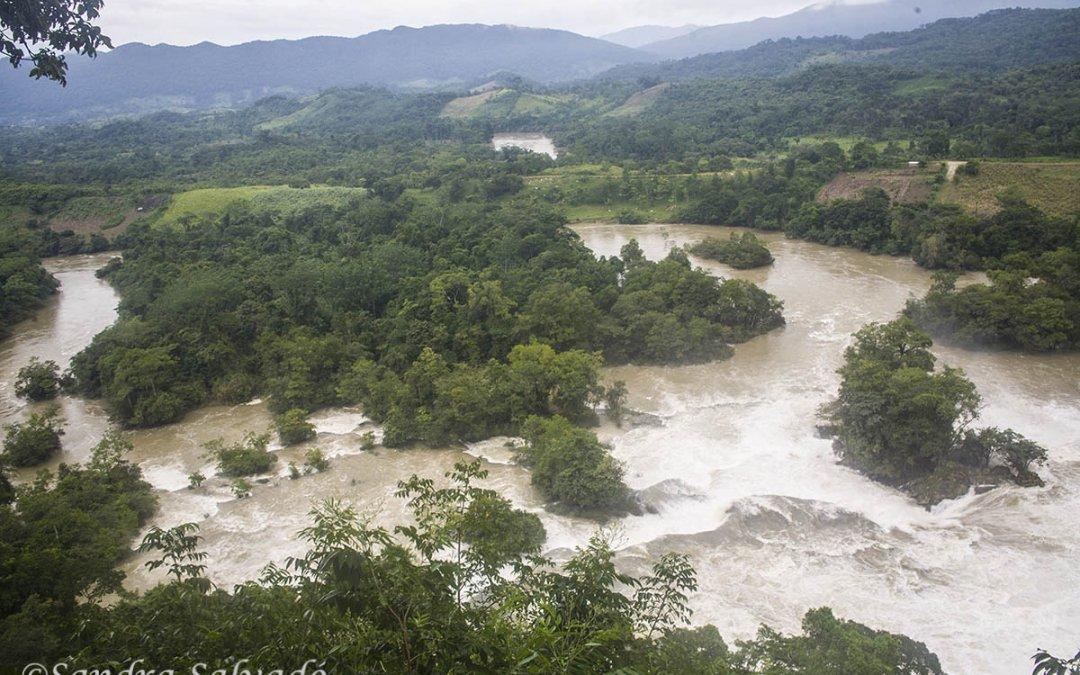 Las Nubes, Montes Azules Biosphere Reserve, Chiapas