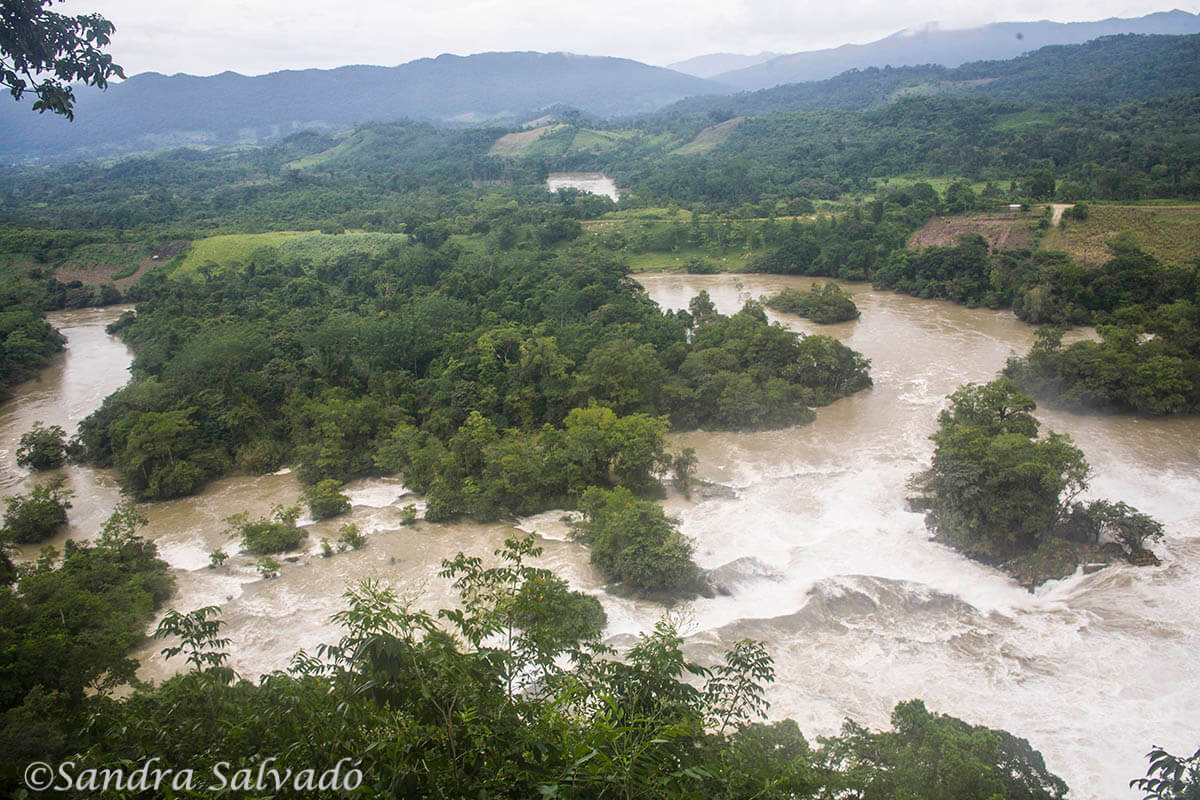 Las Nubes, Reserva Biosfera Montes Azules, Chiapas, México.