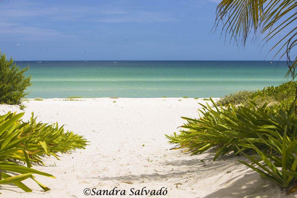 el cuyo peninsula yucatan
