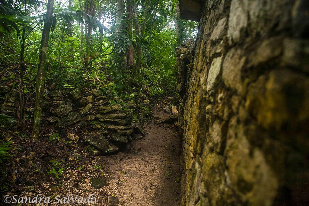 Piedras Negras, the adventure on the banks of the Usumacinta 3