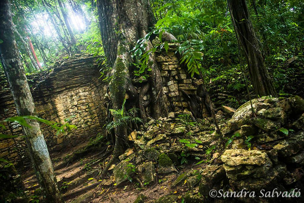 Piedras Negras, la aventura a orillas del Usumacinta
