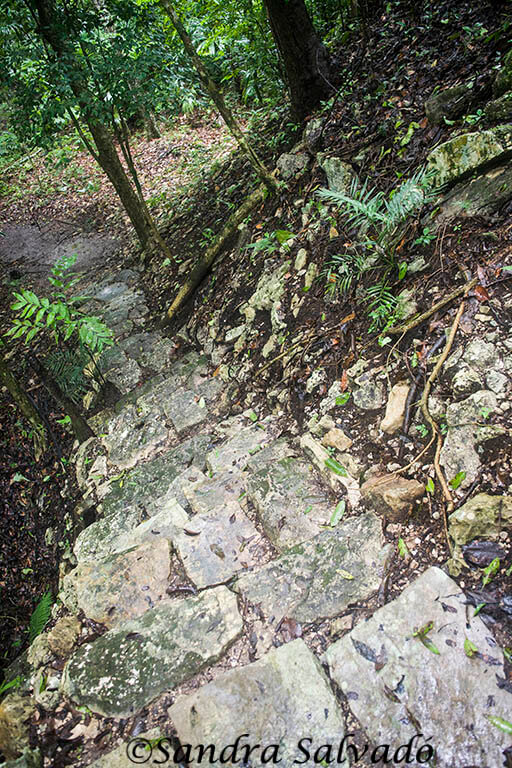 Piedras Negras, the adventure on the banks of the Usumacinta 7