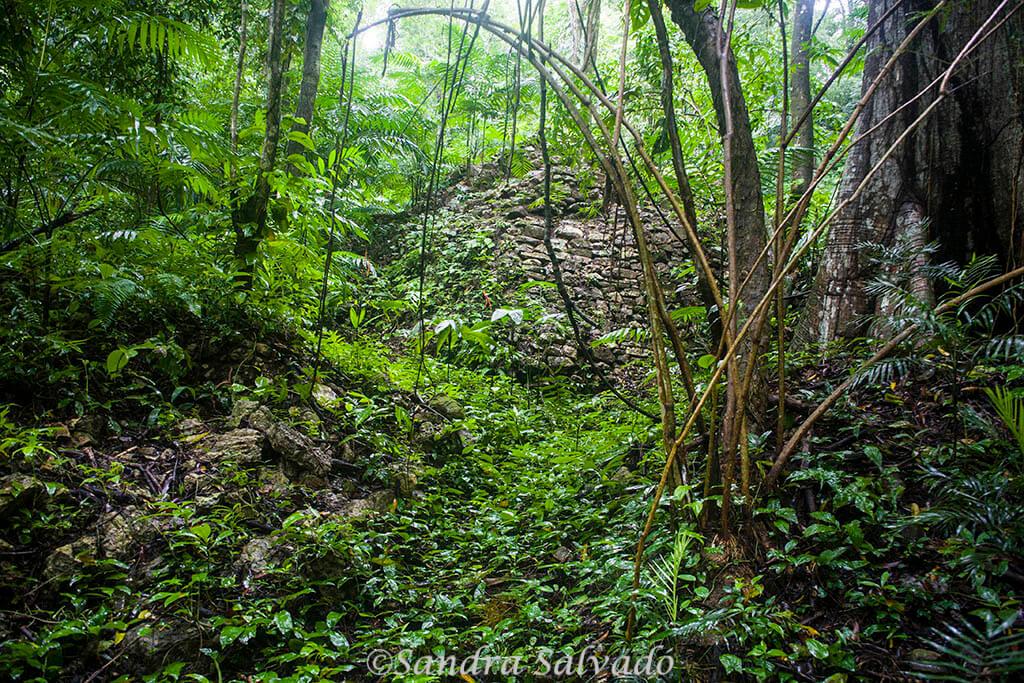Piedras Negras, la aventura a orillas del Usumacinta 1