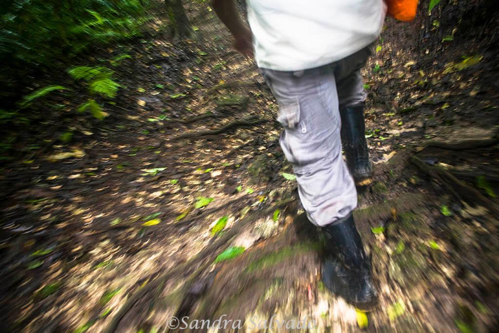 Piedras Negras, la aventura a orillas del Usumacinta 4